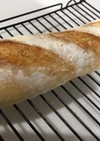 フランスパン ヨーグルト酵母