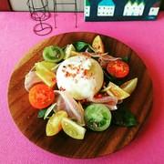 ブッラータのカラフルサラダの写真