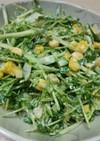 節約☆美味しい豆苗ゴマ・マヨサラダ