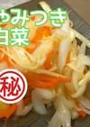 【㊙やみつき白菜】白菜大量消費無限白菜