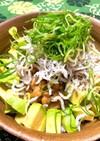 アボカド・納豆・しらす&おろし丼