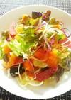 彩り野菜とサラミのトストサラダ♪