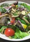 鯖缶で簡単!焼き鯖と茸のサラダ