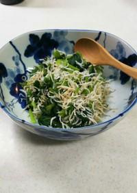 小松菜としらすの和え物