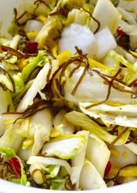 簡単すぐ作れる・白菜の漬物