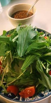 水菜と大根と長芋のサラダの写真