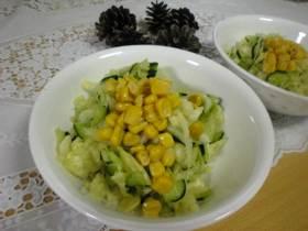 旬の味♪春キャベツ☆簡単おいしいサラダ☆