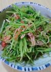 簡単☆豆苗の中華風サラダ
