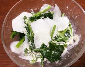 簡単☆かぶが甘い!柚子胡椒マヨサラダ