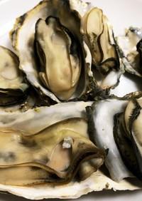 超楽々 殻付き牡蠣で酒蒸し牡蠣作ります