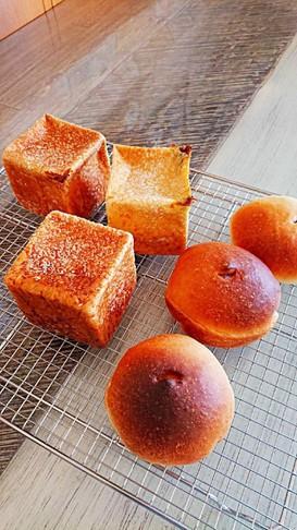 ホームベーカリーでカレーパンとあんパン