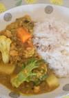 南インド家庭料理風・豆と野菜のカレー