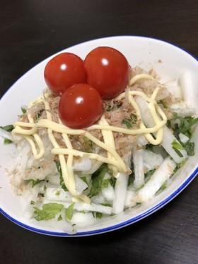 簡単 すぐできる 大根サラダ