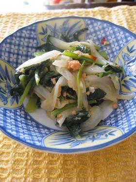 新玉ねぎと小松菜のピリマヨ炒め