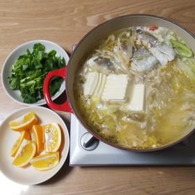 キャベツと鶏肉と鱈のパクチー鍋
