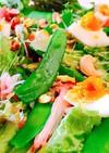 サヤエンドウと半熟卵のグリーンサラダ