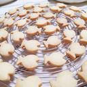 チューブでバターで作る♡さくさくクッキー