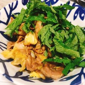 焼肉のたれで簡単肉野菜炒め(大葉のせ)