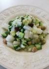 新玉葱 大根 きゅうり ディル サラダ