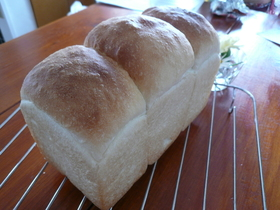 もっこり食パン
