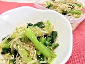【簡単・常備菜】もやしと小松菜のナムル