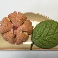 桜のメロンあんパン