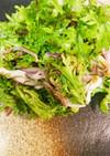 赤玉ねぎとわさび菜サラダ