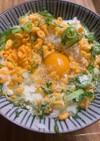 サクサク揚げチーズの卵かけご飯