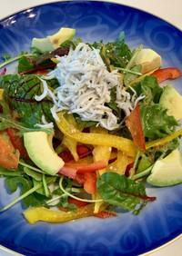 しらすと彩り野菜のサラダ