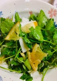 ミツバとカブのサラダ☆はちみつレモンドレ