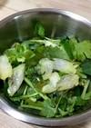 パクチー小松菜セロリのスイートチリサラダ