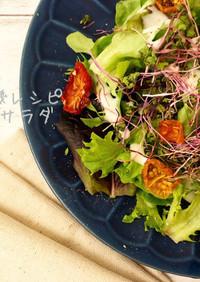 干し野菜サラダ|食品乾燥機ドラミニ