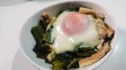 マンバ(高菜)の卵落としの写真
