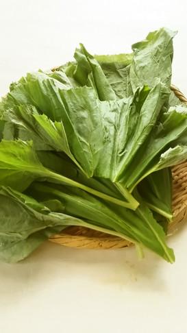【野菜ソムリエ】ふきの葉の下処理