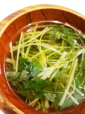 激ウマ超手軽!セロリ水菜のコンソメスープ