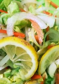 塩レモン ノンオイル野菜サラダ
