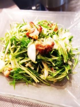 簡単 焼鳥と新玉ねぎと水菜のサラダ