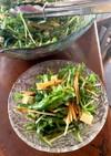 水菜とチーズのサラダ