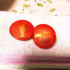 プチトマトの種が出ない切り方!