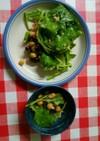 グリーンビーンズツナマヨ酢味噌サラダ