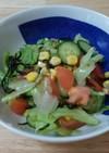 りっちゃんの元気サラダ