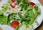 ズボラ サラダ(๑•᎑<๑)でも美味よん