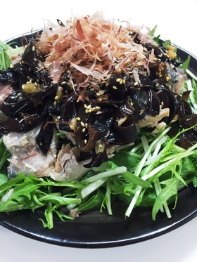 鯖缶と水菜とキクラゲの健康サラサラだ♪