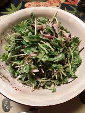 豆苗とひじきのサラダ