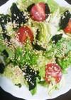 春キャベツとフリルレタスのチョレギサラダ