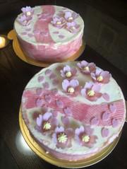 桜のムースケーキの写真