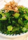 美味しい♡高菜の漬物の作り方
