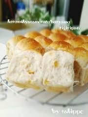 HB*メープル粒ジャム&クルミちぎりパンの写真
