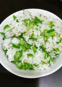 白木の芽(コシアブラ)混ぜご飯