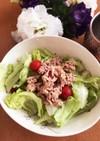 レタスとツナの健康サラダ